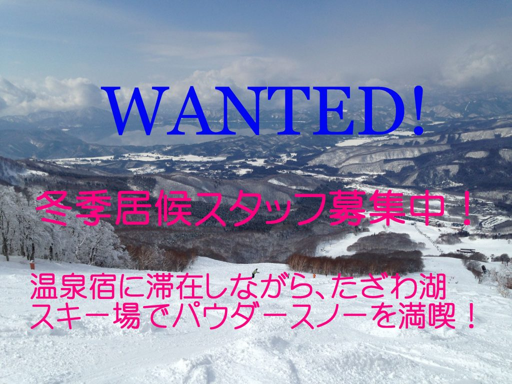 Wanted: Staff for this winter! 冬季居候スタッフ募集中!