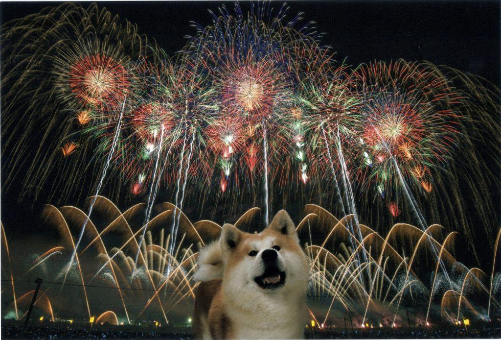 夏の一大イベント、大曲の花火!