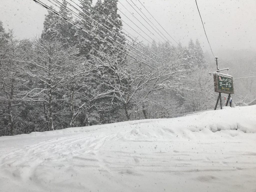 雪、降っています。たざわ湖スキー場、滑走できます!