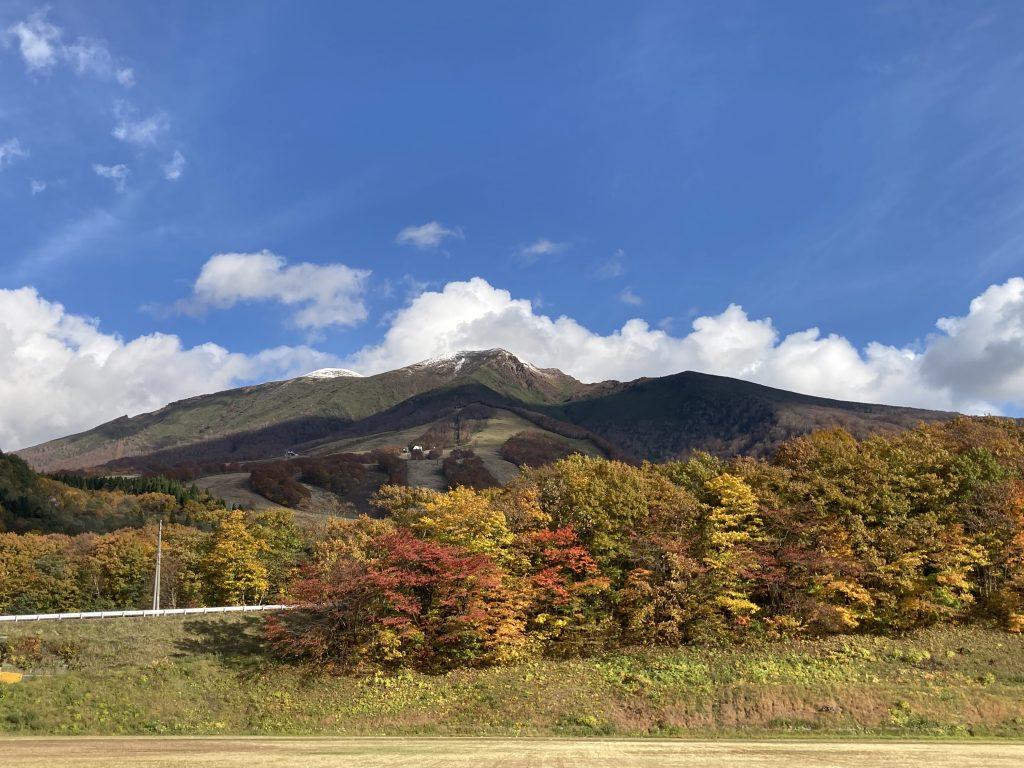 紅葉と雪 @秋田駒ヶ岳