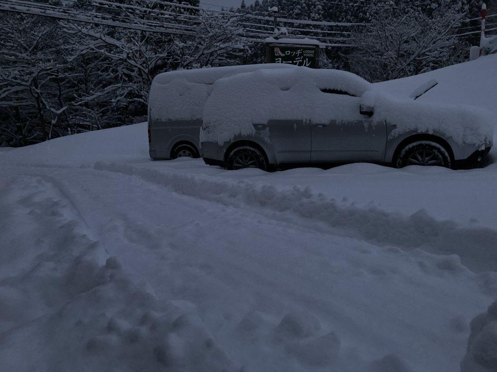 今朝は大量の雪が降りました!